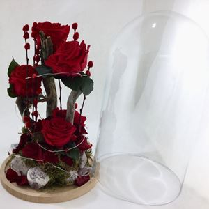 Picture of Forever Roses