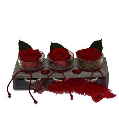 Τριαντάφυλλα Forever