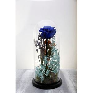Picture of Forever Rose Blue Medium Size