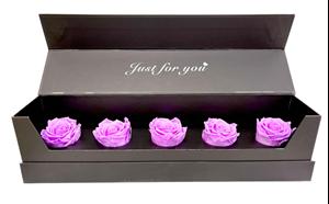 Picture of Box Five Purple Lilac